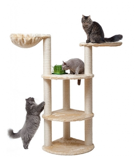 JOSCHUAS Kratzbaum für Katzen; Aufbauhöhe: ca.175 cm; Aufbaubreite: max. ca. 140 cm; Ø Säulen: 11,5 cm; Farbe Abbildung: Beige und JOSCHUA - das grüne Gewächshaus inkl. 2 Nachfüllpackungen mit Saatgutmischung  zur mehrmaligen Anzucht von Gras für Katzen
